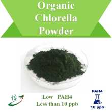 PAH4 Below 10 ppb Organic Chlorella Powder