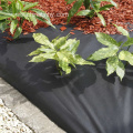 Roof Garden Anti Root Puncture Waterproof Membrane