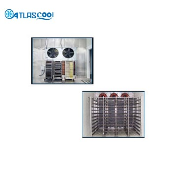 Blast freezer cold room and blast chiller room