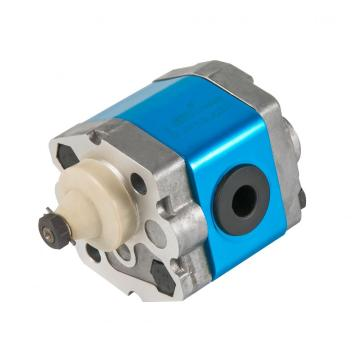 external gear pump leakage
