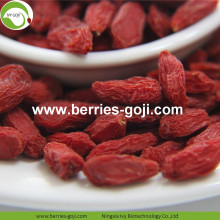 Factory Wholesale Super Food Nutrition Malaysia Goji
