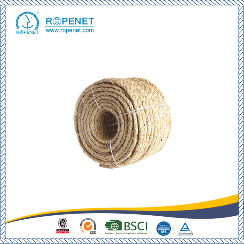 High Quality Sisal Rope with Best Price