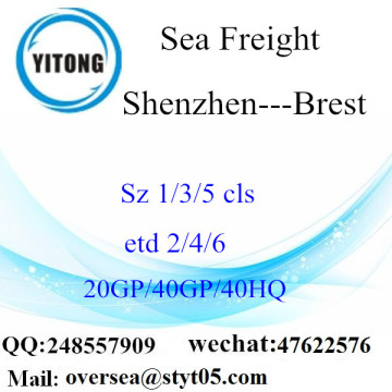Shenzhen Port Sea Freight Shipping To Brest