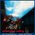 Ceiling With Custom Sky Graphic UV Printing Service
