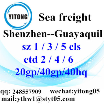 Shenzhen Logistcs Agent to Guayaquil