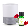 New Style Best Quietest Nebulizing Scent Diffuser