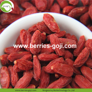 Factory Supply Natural A Grade Fruit Goji Berries