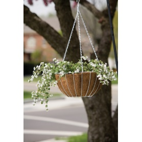 Growers Hanging Basket includes liners