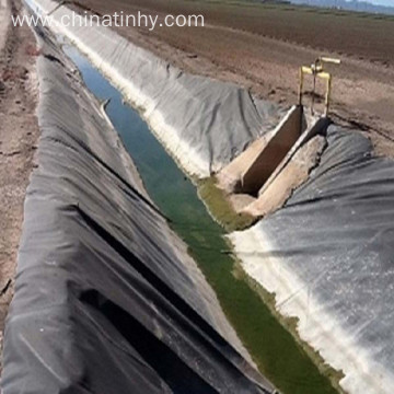 Competitive Price HDPE Geomembrane