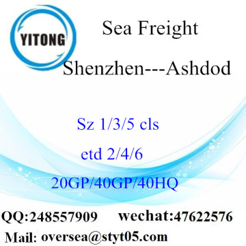 Shenzhen Port Sea Freight Shipping To Ashdod