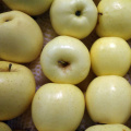 fresh golden delicious apple