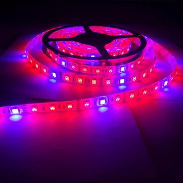 Plant Grow lights Full Spectrum LED Strip