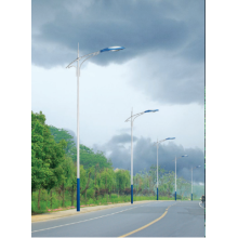 OEM for Led Street Lamp Price LED  Powered Outdoor Pathway Lights supply to Hungary Factory