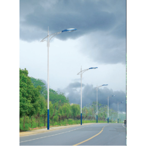 Chinese Professional for Led Street Lamp Bulbs LED  Powered Outdoor Pathway Lights export to Seychelles Factory