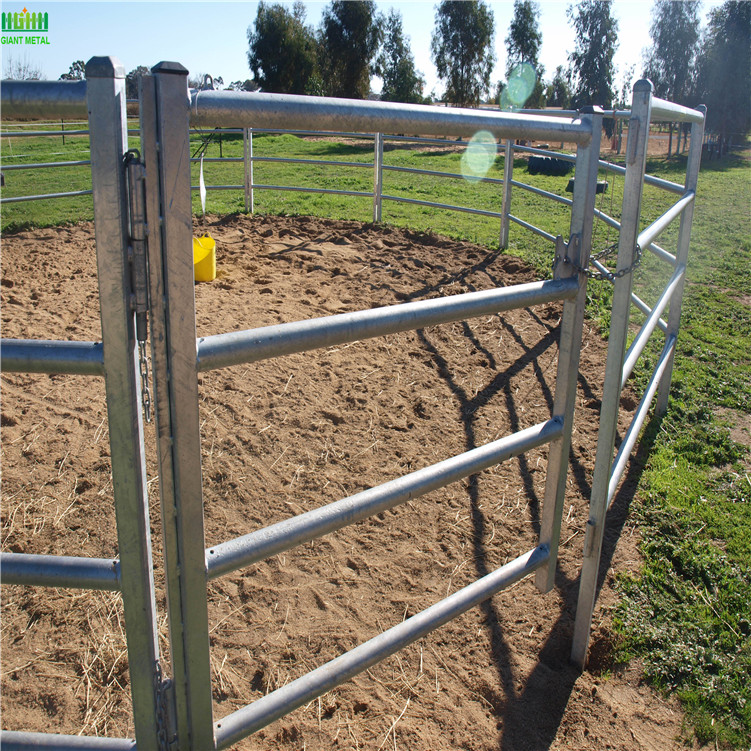 Fences For Horses5