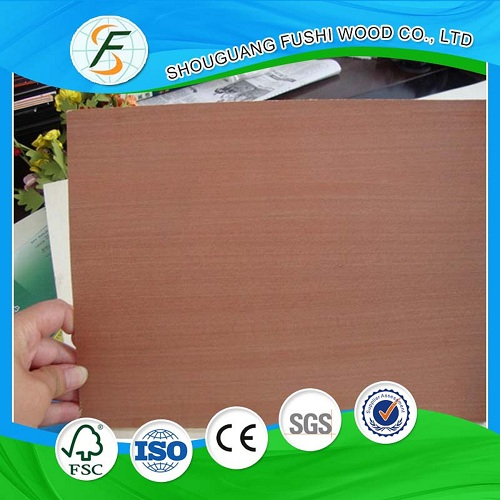 Commercial Plywood with Sapele Face and Back