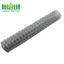 Hot-dip galvanized welded wire mesh importer