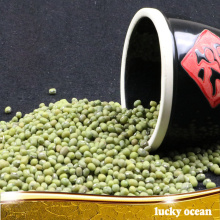 3.2-4.0mm Dried green mung bean