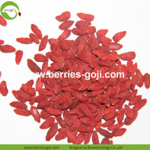Factory Wholesale Sun Dried New Harvest Wolfberries