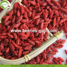 Wholesale Healthy Nutrition Wolfberry