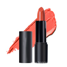 Private Label Waterproof lipstick makeup makeup lip gloss