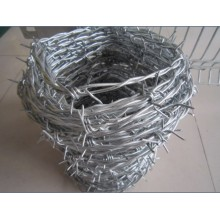 25kg electro galvanized barb wire per roll
