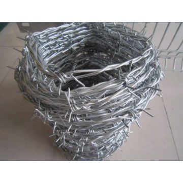Galvanized Wire Price Per Roll Barb Fencing Design