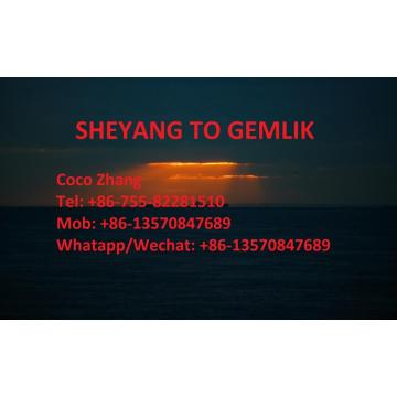 Jiangsu Sheyang Sea Freight to Turkey Gemlik