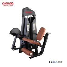 Customized Supplier for Cardio Gym Equipment Commercial Gym Exercise Equipment Seated Leg Extension supply to Japan Factories