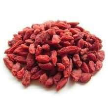 Wholesale dried wild goji berries