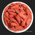 Top Quality Low Price Goji Berries From Ningxia