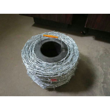 Stainless Steel PVC Galvanized Barbed Wire for Sale