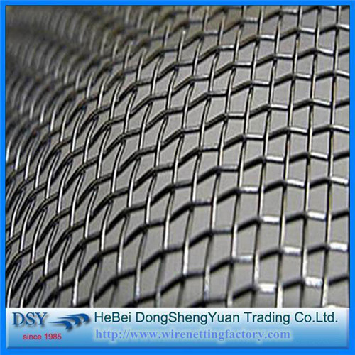 Hot Galvanized Crimped Wire Mesh for Sales