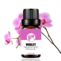 Factory supply pure violet essential oil wholesale