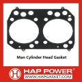 Man Gasket Cylinder Head  51.03901.0391