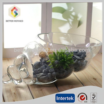 Clear Glass Shell Vase