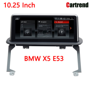 10.25 Car Radio na BMW X5 E53