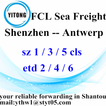 Shenzhen Global Ocean Freight Agent to Antwerp