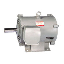 Elevator Component , Small Vibration SB-JR Series Motors
