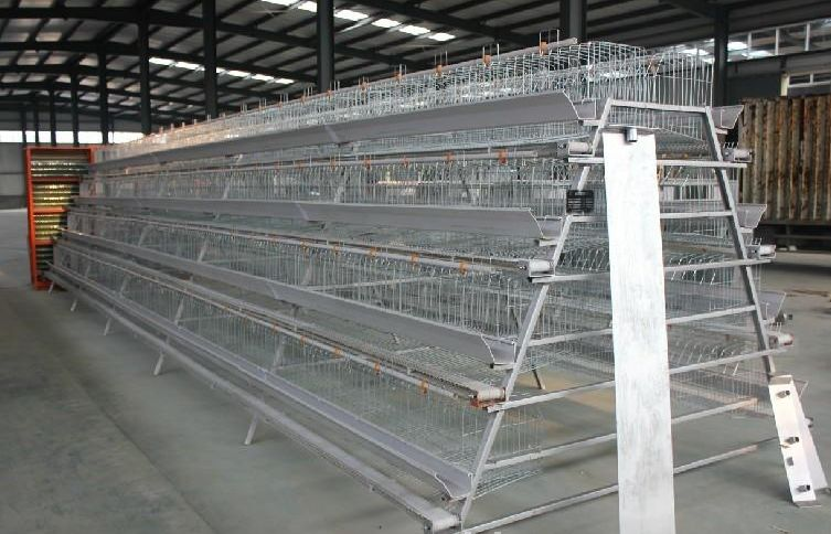 A Type Poultry Cages Machine