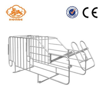 Most popular hot galvanized gestation stall