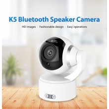 1080P Wireless Speaker Vedio Monitoring IP Security Camera