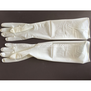 Medical Sterile Latex Disposable Gynaecological Gloves