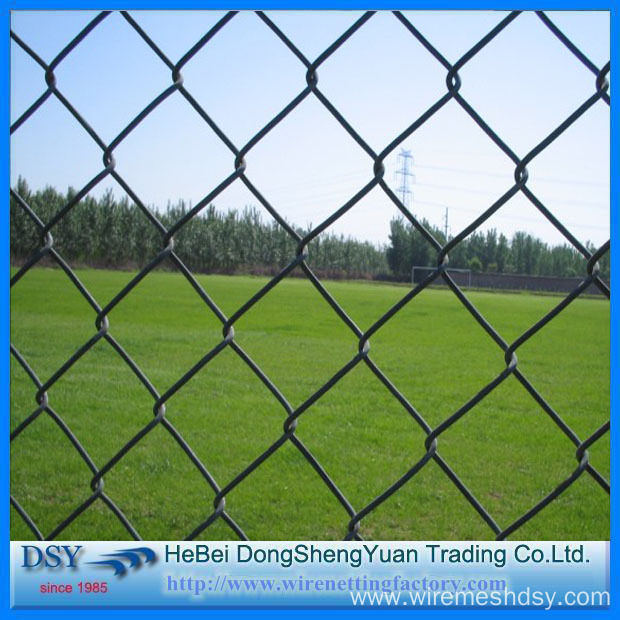 31 Years Factory Galvanized Chain Link Mesh