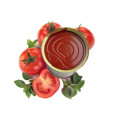 Fresh Conventional Canned Tomato Paste