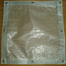 ODM for Clear Tarp Clear Transparent Woven PE Tarpaulin export to Portugal Exporter