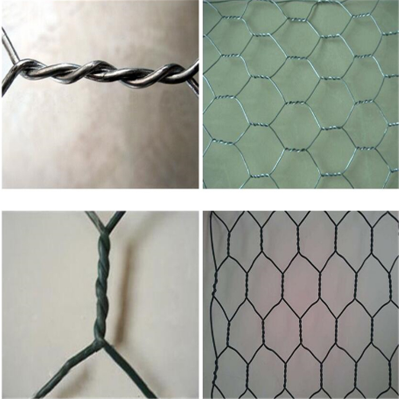 Galvanized Hexagonal Wire Mesh Netting for Chicken
