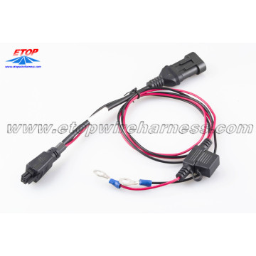 Big discounting for China Custom Molded Wire Assembly,Overmolded Connectors For Harness Manufacturer Molded Cable Wire Assembly supply to Japan Suppliers