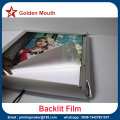 Wall Lighted Picture Poster Frame