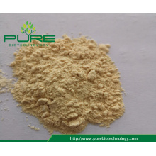Best Price Dried garlic powder /Dehydrated garlic powder
